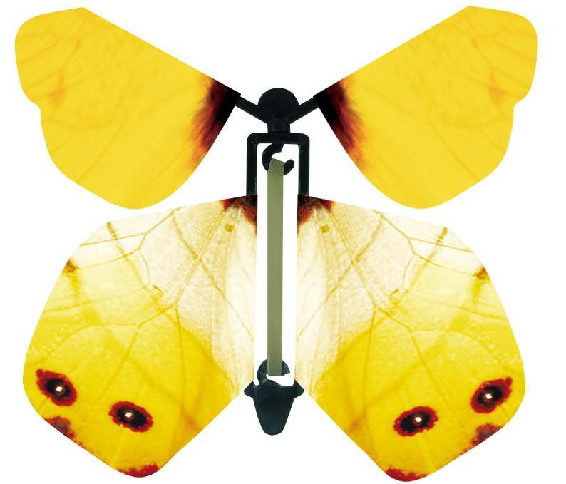 Летающая бабочка в открытку